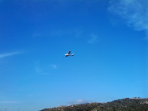 Airplane Flying in El Cajon against the blue sky looking for El Cajon Appliance Repair.